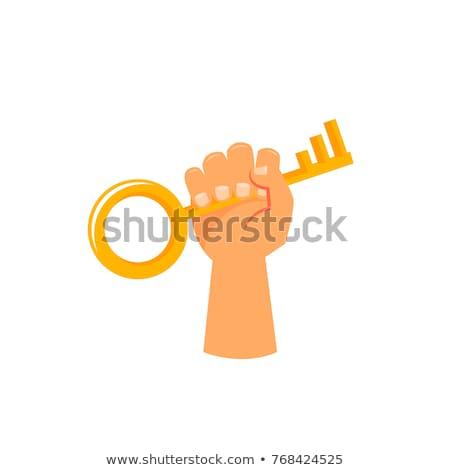 funding   golden key on white background stock photo © tashatuvango