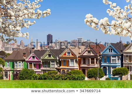 The Painted Ladies at Alamo Square, Famous Victorian Houses in S Stock photo © marco_rubino