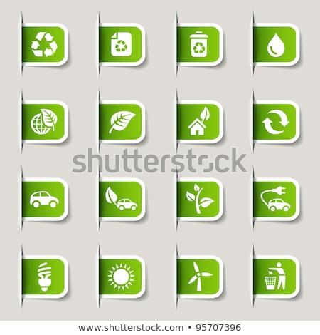 Protegido verde vetor ícone botão internet Foto stock © rizwanali3d