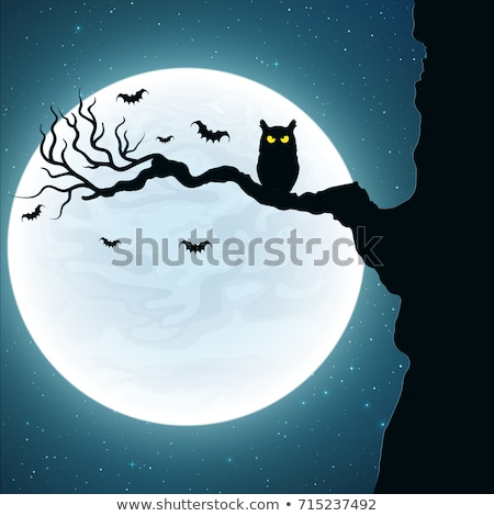 Night owl with yellow moon and stars Stock photo © Anna_leni