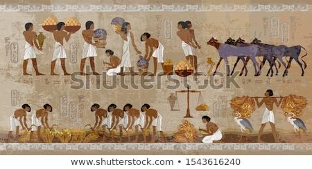 ancient egypt hieroglyphics on wall stock photo © mikko