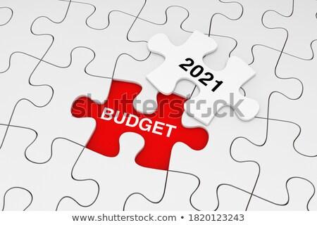 Politik weiß Wort rot 3d render Management Stock foto © tashatuvango