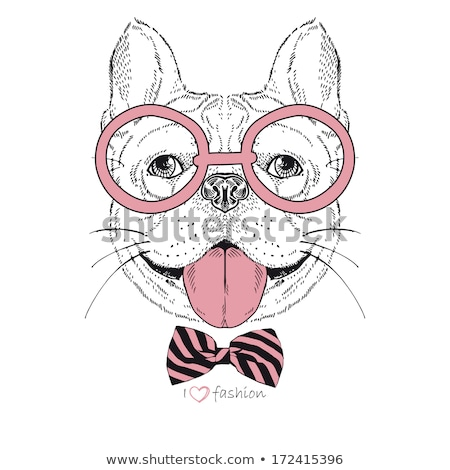 French Bulldog in glasses and a bow tie Stock photo © OleksandrO