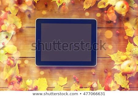 keret · őszi · levelek · gyümölcsök · bogyók · fa · természet - stock fotó © dolgachov