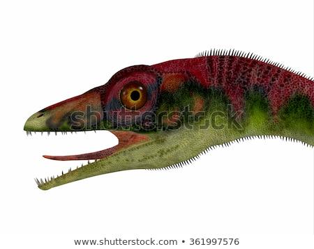 恐竜 · 3dのレンダリング · サイズ · トルコ · 遅い · を実行して - ストックフォト © AlienCat