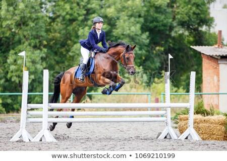 Young girl jumping on horseback Stock photo © smuki