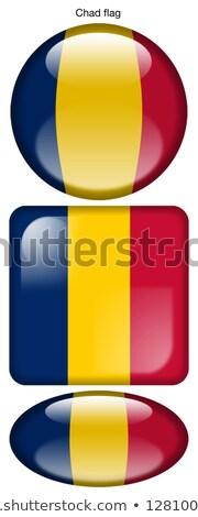 Chad Flag Oval Button Stock photo © Bigalbaloo