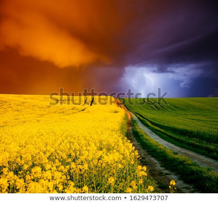 stormy rural springtime scenery stock photo © prill