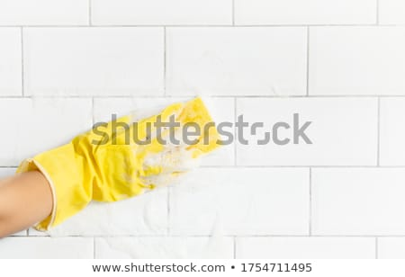 janitor cleaning wet floor in toilet stock photo © bluering
