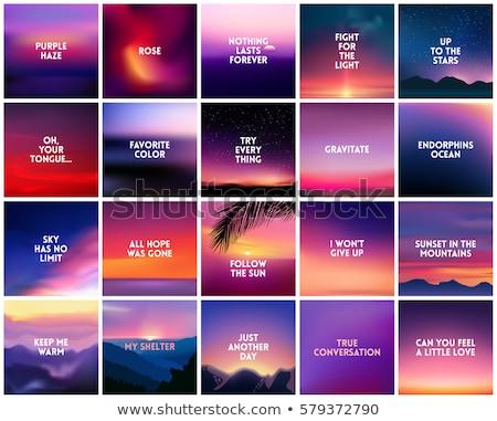 квадратный расплывчатый сирень закат цветами розовый Сток-фото © MarySan