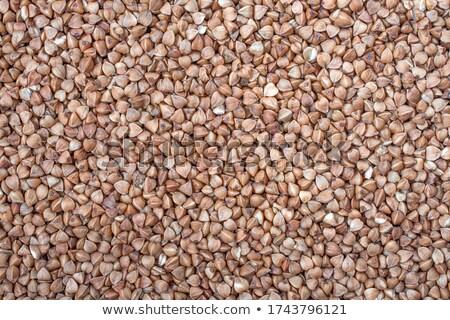 Agricola sementi top view Foto d'archivio © stevanovicigor