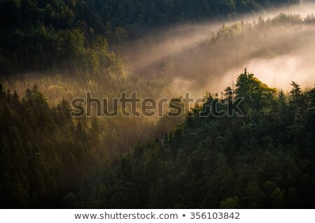 The landscape of Bohemian Switzerland Stock photo © ondrej83