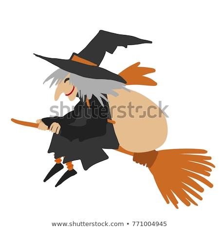 Cartoon Halloween Witch Flying on her Broomstick Stock photo © Krisdog