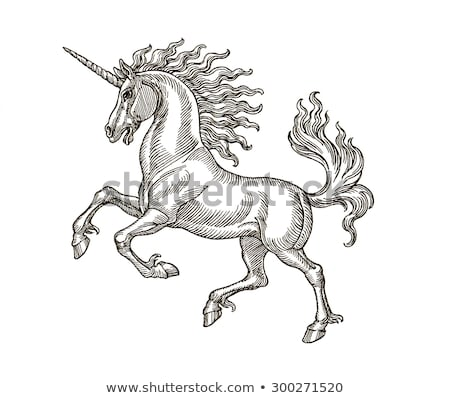 Heraldic Style Unicorn Drawing Stock photo © Krisdog