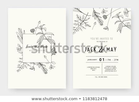 Vektor minimalista esküvői meghívó kártya sablon kettő Stock fotó © orson
