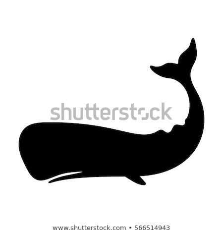 Siluet balina deniz ikon doğrusal stil Stok fotoğraf © Olena