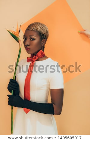 the girl is holding a beautiful strelitzia flower stock photo © artjazz