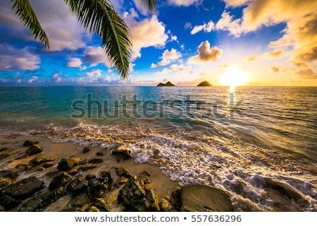 Praia ver trilha dois pequeno Foto stock © dirkr