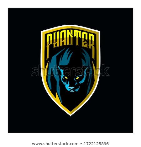 siyah · panter · maskot · video · oyunu · oyuncu · çevrimiçi - stok fotoğraf © krisdog