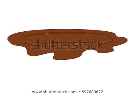 Puddle of mud isolated. Dirty plash on white background Stock photo © popaukropa