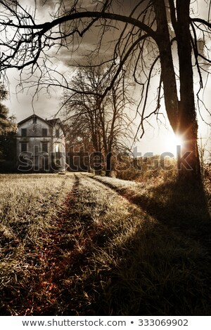 haunted house at the end of the road stock photo © colematt