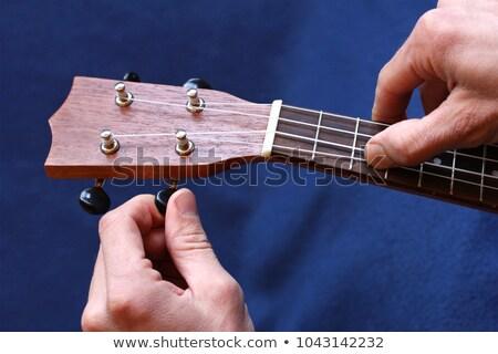 Tuning the string of ukulele, human hands Stock photo © dashapetrenko