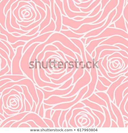 vektör · siyah · güller · çiçekler · dekoratif - stok fotoğraf © essl