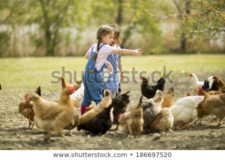 gyerekek · szélmalom · színes · nyár · narancs · zöld - stock fotó © bluering