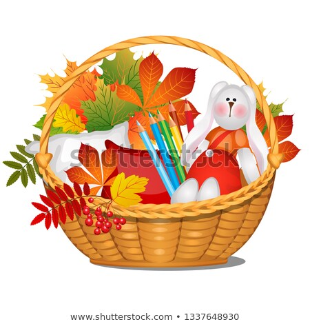 Wicker basket with autumn leaves, crayons, a pillow and a stuffed rabbit isolated on white backgroun Stock photo © Lady-Luck
