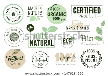Természetes termék vegan étel matrica szett Stock fotó © robuart