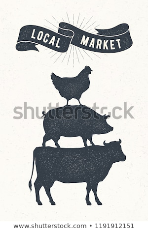 Pig. Vintage retro print, poster, banner. Black and white Stock photo © FoxysGraphic