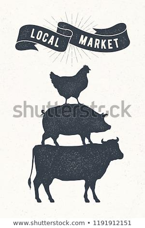 свинья Vintage ретро печать плакат баннер Сток-фото © FoxysGraphic