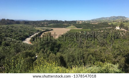 Luxuriante vert verger ferme terres agriculture Photo stock © cboswell