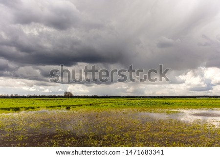 cloudy sky above green fields Stock photo © morrbyte
