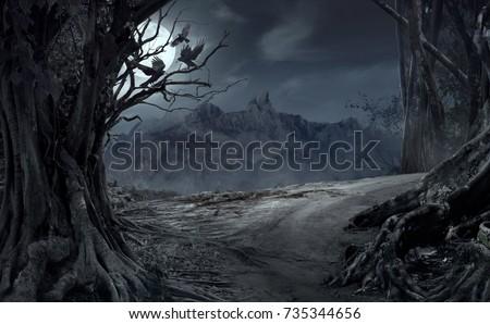 подробность деревья туманный лес красочный осень Сток-фото © meinzahn