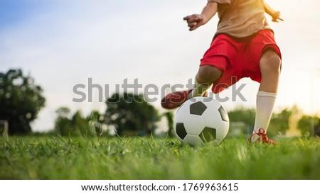 少年 サッカーボール 公園 草 スポーツ 子 ストックフォト © Lopolo