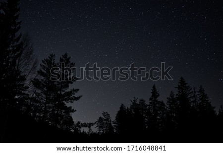 Mountains and forest at night, sky with clouds and stars, beautiful landscape Stock photo © MarySan