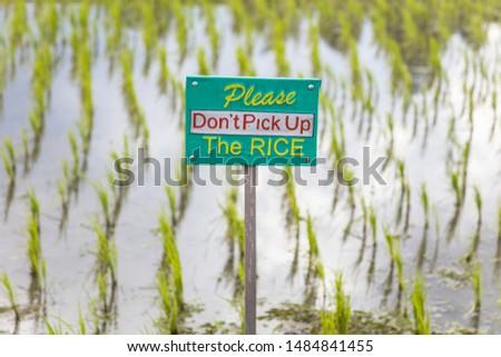 Turisták figyelmeztető jel rizs mezők délkelet Bali Stock fotó © boggy