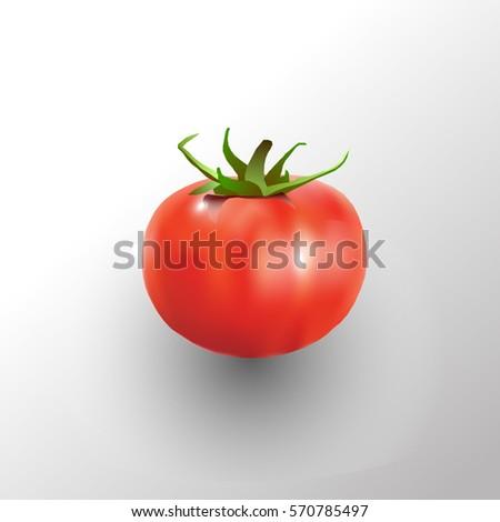Red ripe tomato isolated on white background vector illustration Stock photo © lenapix