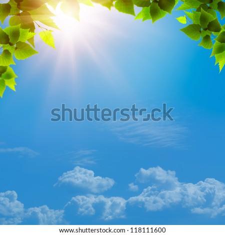 grünen · Laub · blau · natürlichen · Hintergrund · Frühling - stock foto © tolokonov