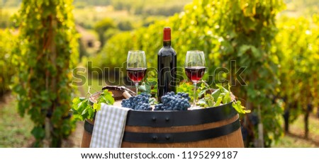 pouring red wine into the glass barrel outdoor in bordeaux vineyard stock photo © freeprod