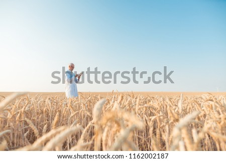 férfi · búzamező · fiatalember · siker · mezőgazdaság · szabadság - stock fotó © kzenon