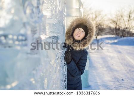 Gyönyörű mosolyog fiatal nő jég szabadtér tél Stock fotó © galitskaya