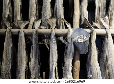 Drying flakes for stockfish cod fish in winter. Lofoten islands, Norway Stock photo © dmitry_rukhlenko