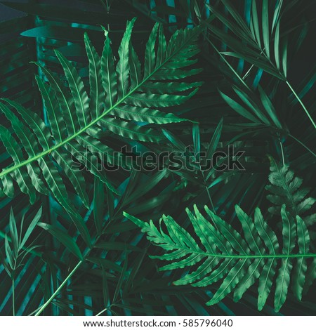 Watercolor style colorful bottom background  Stock photo © Blue_daemon