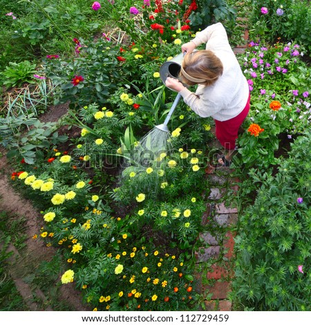 View at senior woman working with spring flowers in greengarden Stock photo © boggy