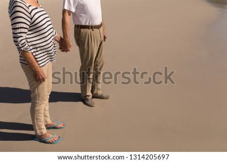 Alacsony részleg idős pár kéz a kézben tengerpart napsütés Stock fotó © wavebreak_media
