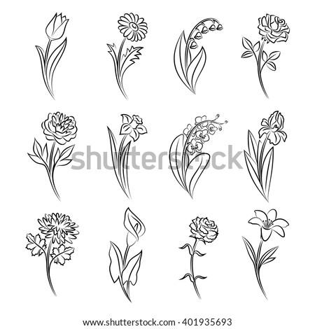 Gyönyörű virág szett vonal művészet terv Stock fotó © ESSL