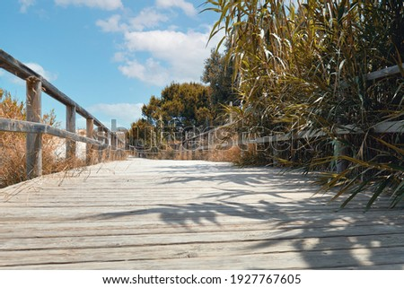 Wooden empty board walk leading through sandy dunes to Mediterra Stock photo © amok
