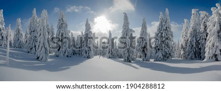 Frozen nature background. Blue background. High resolution photo.  Stock photo © oksanika